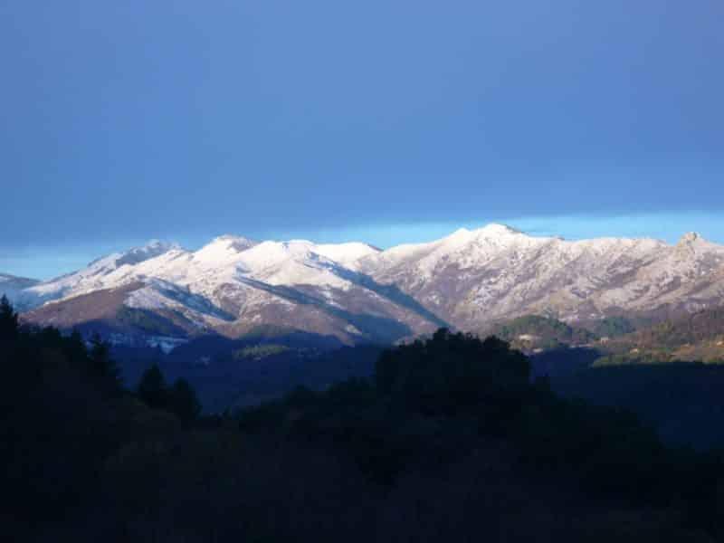 neige sous le ciel bleu