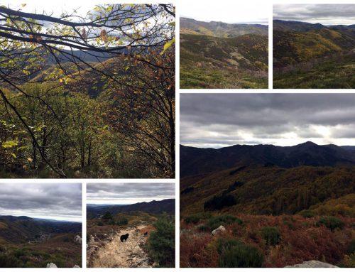 Dégustation et Découverte en Ardèche